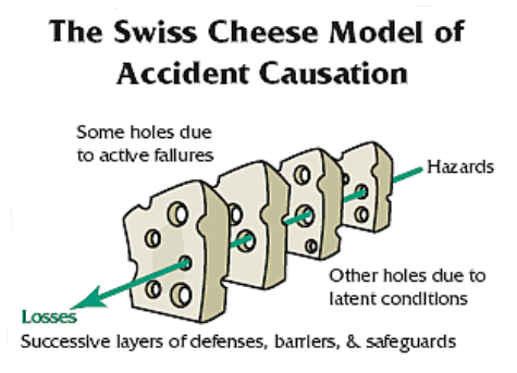 investigation of processed cheese This clip could be used to study cheese production, comparing normal cheese and processed cheese preparation and identifying the differences students could undertake investigation to examine how different cheeses behave when cooked, and their various advantages and disadvantages.